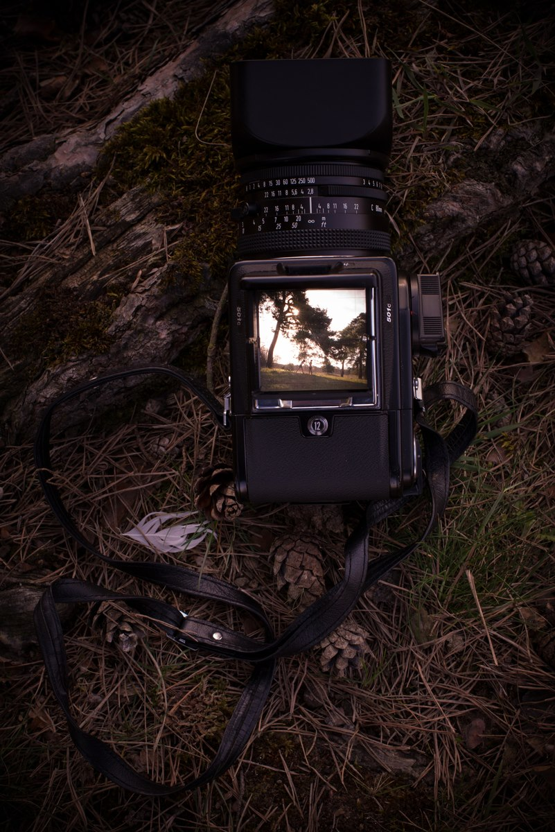 Hasselblad Fotoapparat